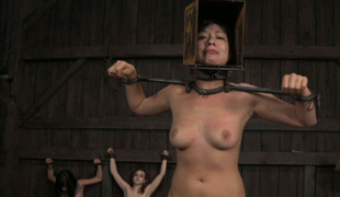 Three restrained porn models are ready for tormenting