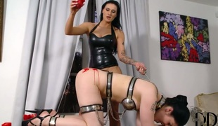 Lucia Exalt gets her intervene stiff by dudes construct adulate torpedo